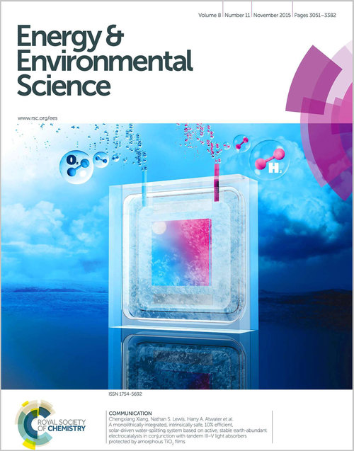 Publication in Energy & Environmental Science